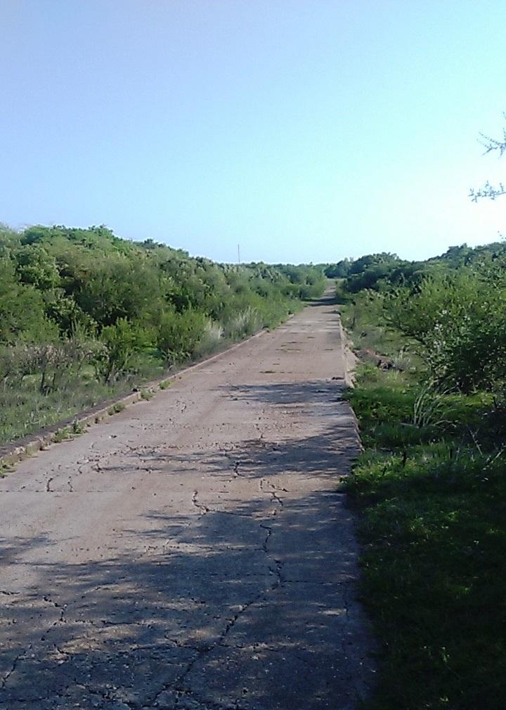 a. acceso