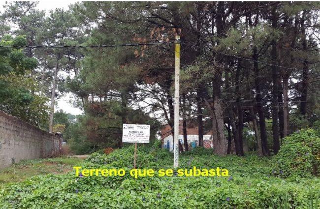 Terreno Bien Ubicado en El Pinar Sur