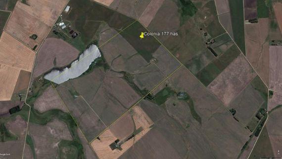 Campo agrícola en Colonia 177 has