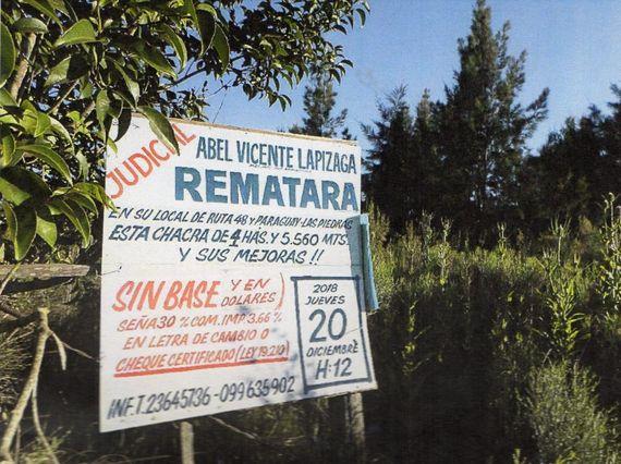 53 Hás de Campo en 5 Fracciones Ubicadas en ruta 7 Km. 37.-Totoral del Sauce