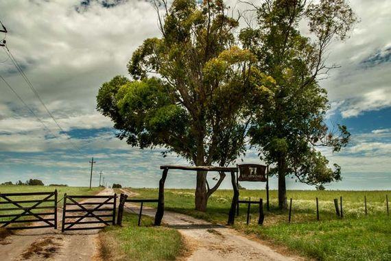 Espectacular campo agrícola en Paysandú