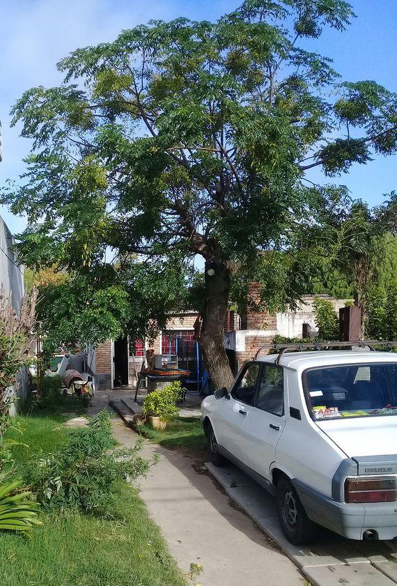 Casa Unidad 002, Parque Rivera