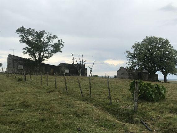 Fracción de campo en Tacuarembó