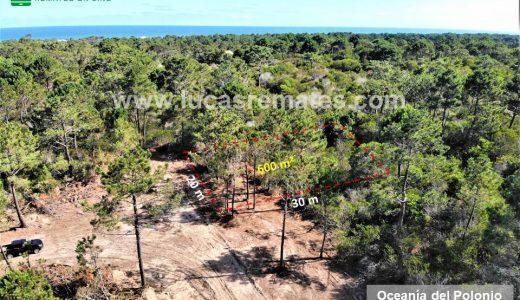 Terrenos en Punta del Diablo, Barra del Chuy, Puimayen, La Esmeralda, La Paloma y Oceanía del Polonio financiados