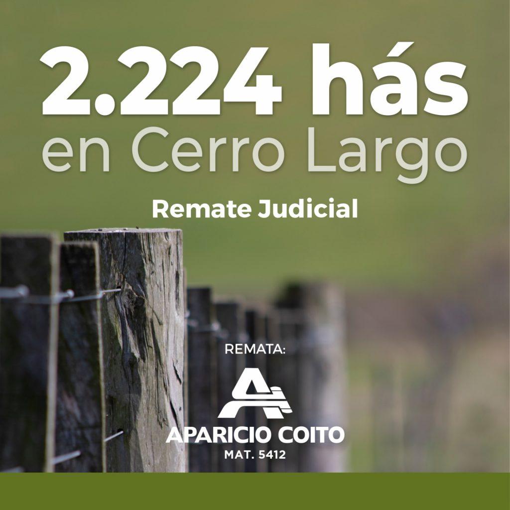 Remate Judicial de 2.224 Hectáreas en Cerro Largo
