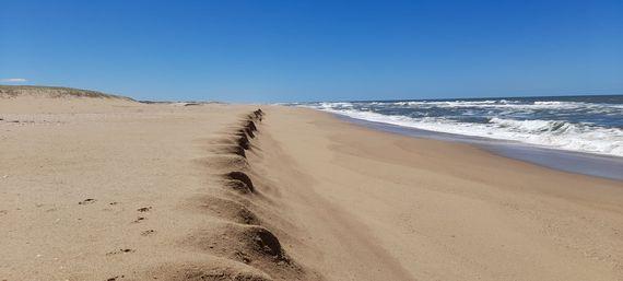 """8 solares de mas de 500 m2 a metros del mar en el Balneario """"El Palenque"""", Rocha"""